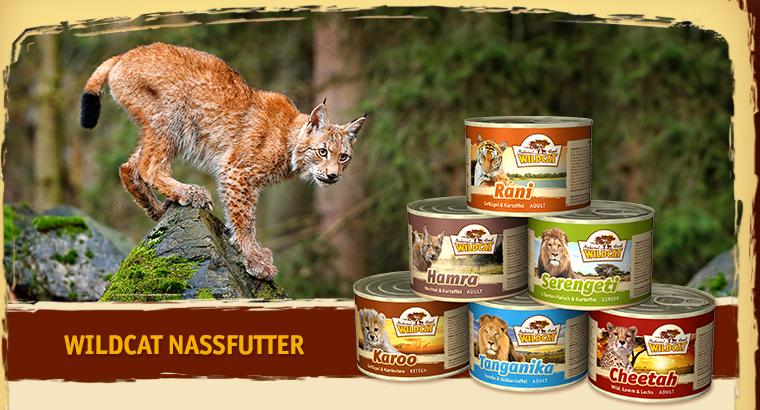 Влажная пища Wildcat